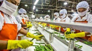 Производство салатов, закусок